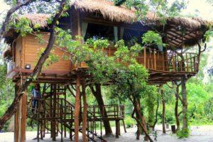 rumah-pohon-villa-zarra-pulau-leebong-19